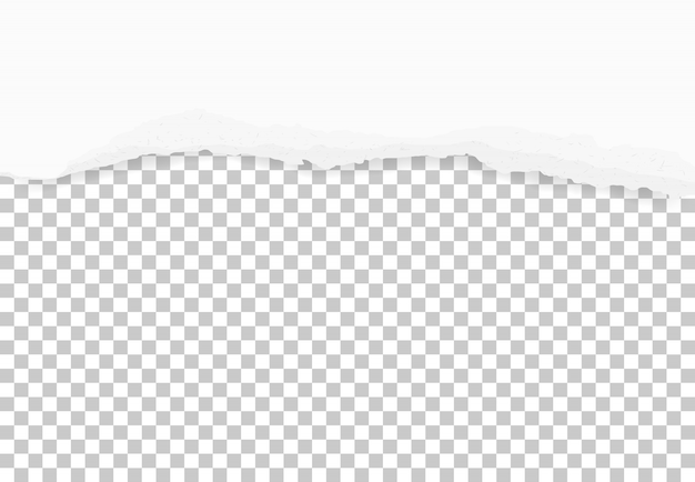 Bords de papier déchirés pour le fond Vecteur Premium
