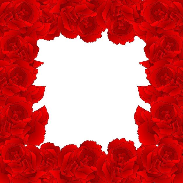 Bordure de fleur d'oeillet rouge Vecteur Premium