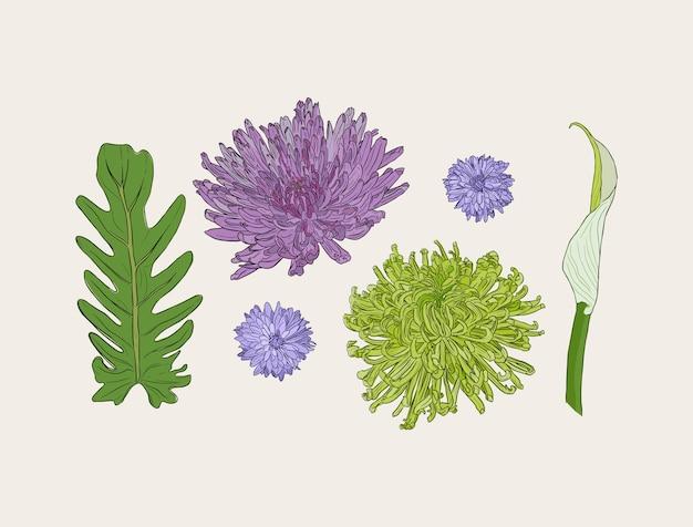 Bouquet avec des fleurs de printemps dessinés à la main vector illustration. Vecteur Premium