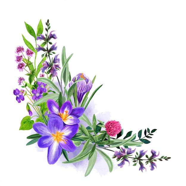 Bouquet De Fleurs Violettes Des Champs Sauvages, Dessinés à La Main Vecteur Premium