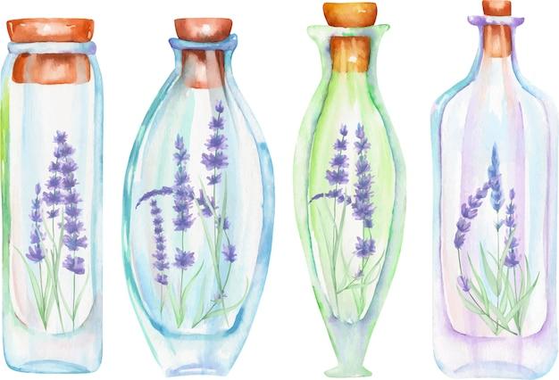 Bouteilles d'aquarelle avec des fleurs de lavande tendres à l'intérieur Vecteur Premium