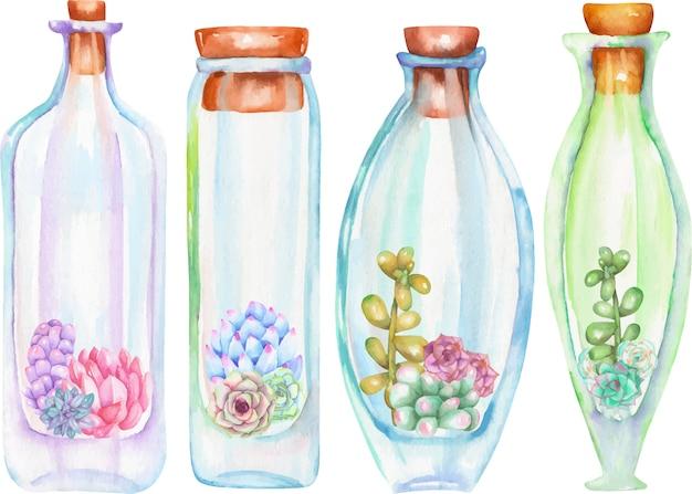 Bouteilles aquarelles avec plantes grasses et cuctus à l'intérieur Vecteur Premium