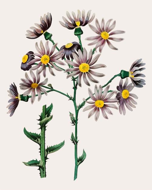 Branche de fleur pourpre Vecteur gratuit