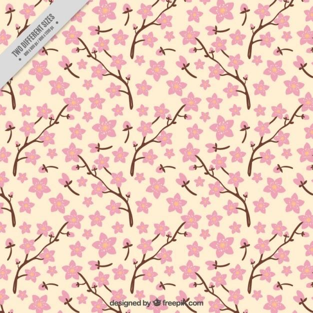 branches avec des fleurs de cerisier fond