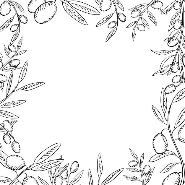 Branches d'olive avec fruits contour cadre Vecteur Premium