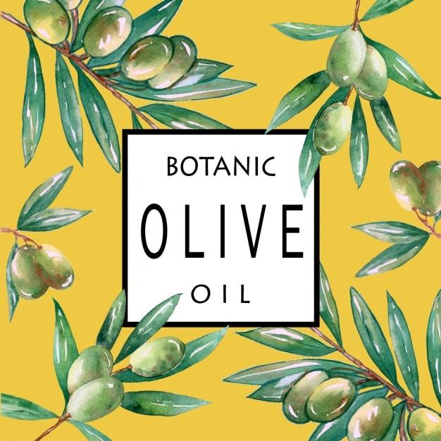 Branches d'olivier fond Vecteur gratuit