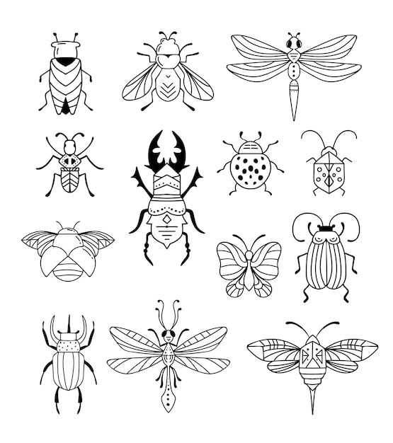Bugs, Insectes, Papillon, Coccinelle, Coléoptère, Machaon, Collection De Libellules. Vecteur Premium