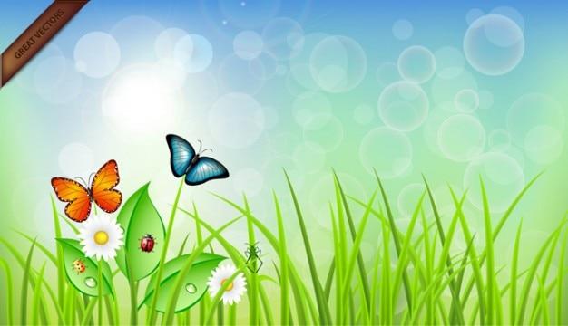 Buterflies sur l'herbe illustration Vecteur gratuit