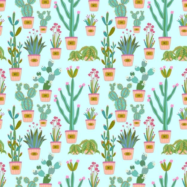 Cactus coloré et modèle sans couture succulente Vecteur Premium