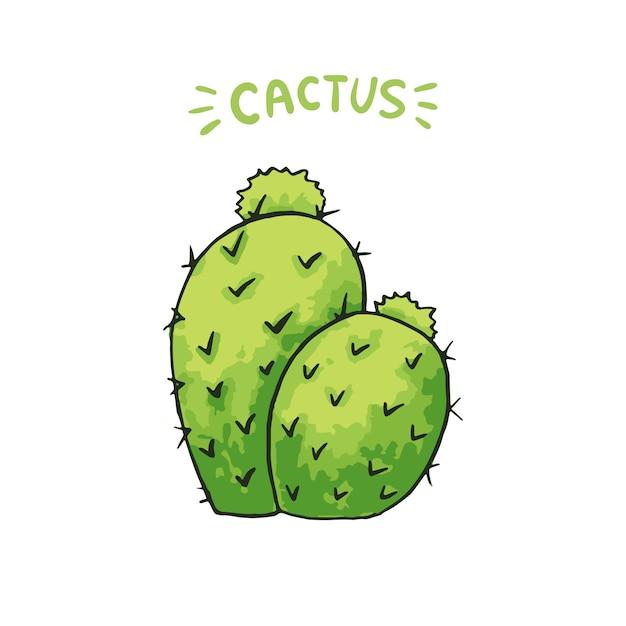 Cactus mexicain Vecteur gratuit