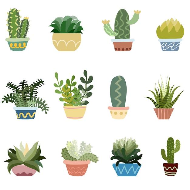 Cactus en pots vector ensemble Vecteur Premium