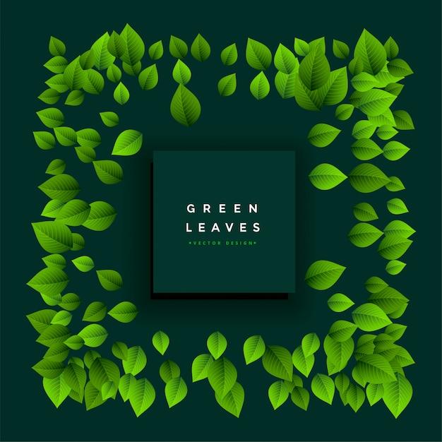 Cadre de belles feuilles vertes avec espace de texte Vecteur gratuit