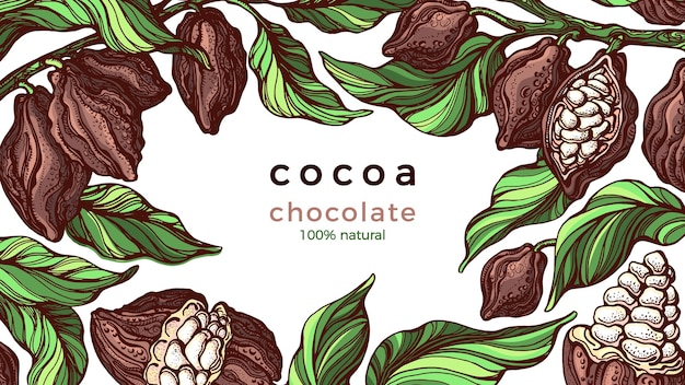 Cadre De Cacao. Chocolat Naturel. Branche Dessinée à La Main, Haricot, Fruits Tropicaux Vecteur Premium