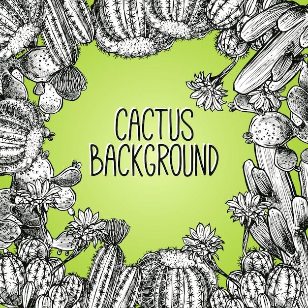Cadre de croquis de cactus Vecteur gratuit