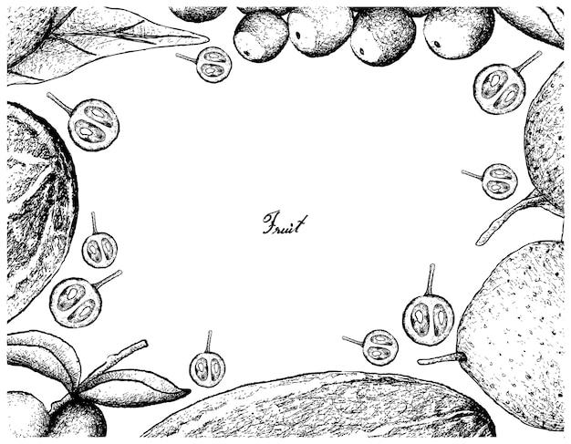 Cadre dessiné à la main de fruits frais sur fond blanc Vecteur Premium