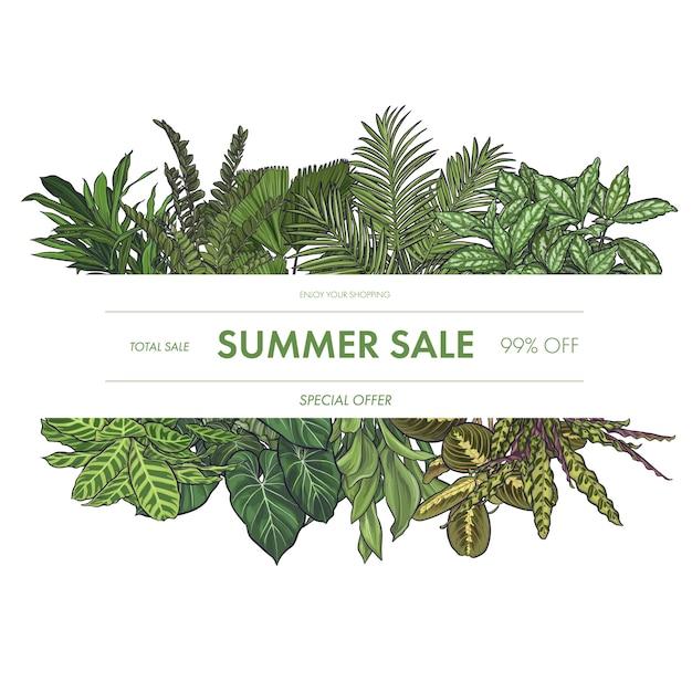 Cadre De Feuilles Tropicales Exotiques Vecteur gratuit