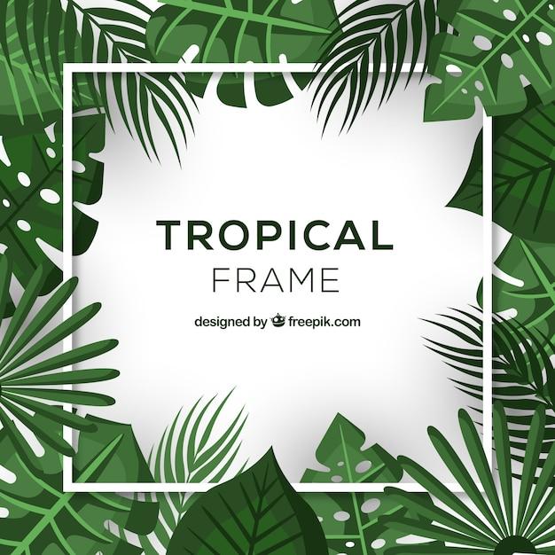 Cadre de feuilles tropicales réalistes Vecteur gratuit