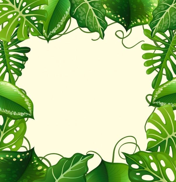 Cadre avec feuilles vertes Vecteur gratuit