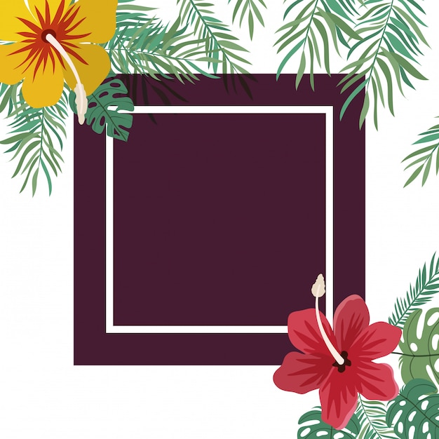 Cadre avec fleur et feuilles Vecteur gratuit