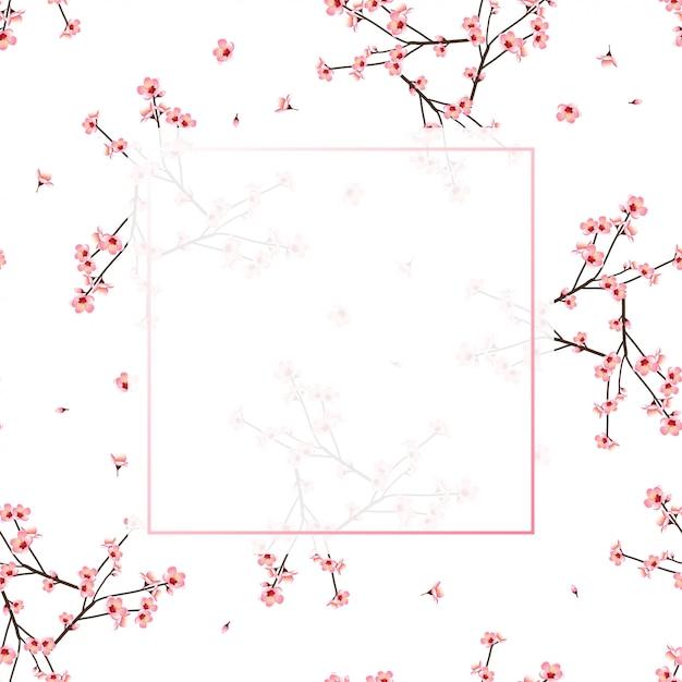 Cadre fleur momo pêche fond blanc Vecteur Premium