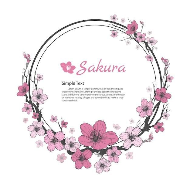 Cadre De Fleur De Sakura Dessin Et Croquis Sur Fond Blanc