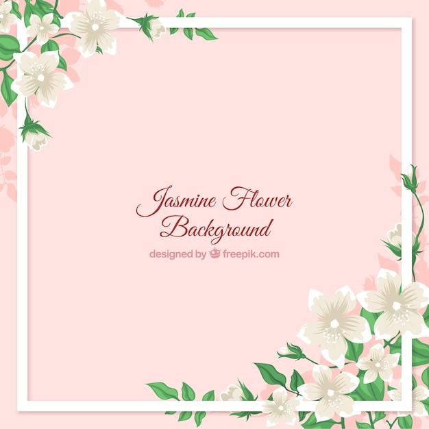 Cadre de fond avec du jasmin Vecteur gratuit