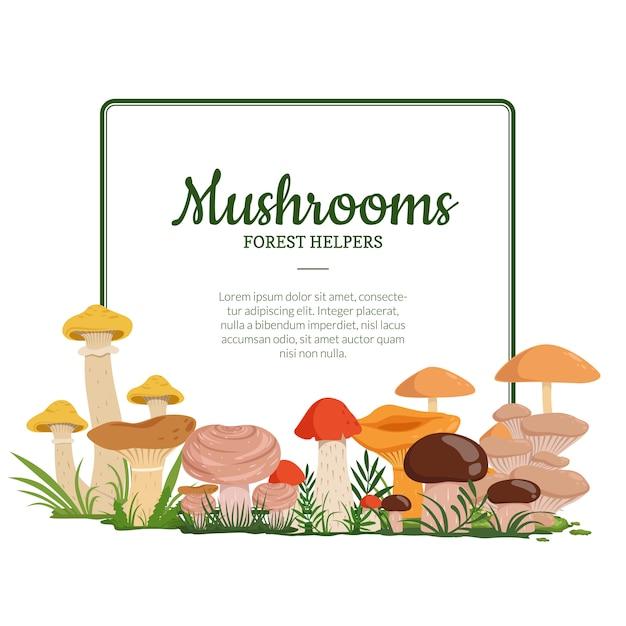 Cadre avec place pour le texte et avec les champignons de dessin animé ci-dessous illustration Vecteur Premium