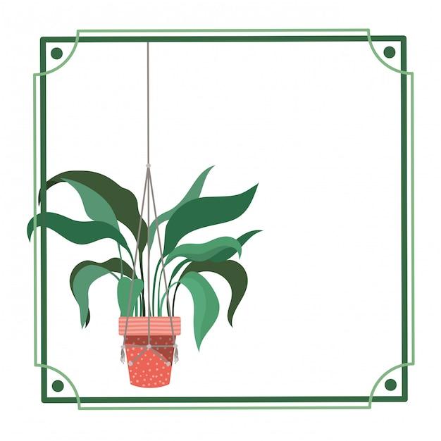 Cadre avec plante d'intérieur sur des cintres en macramé Vecteur Premium