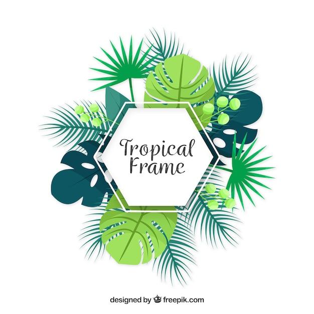 Cadre plat d'été avec des feuilles tropicales Vecteur gratuit