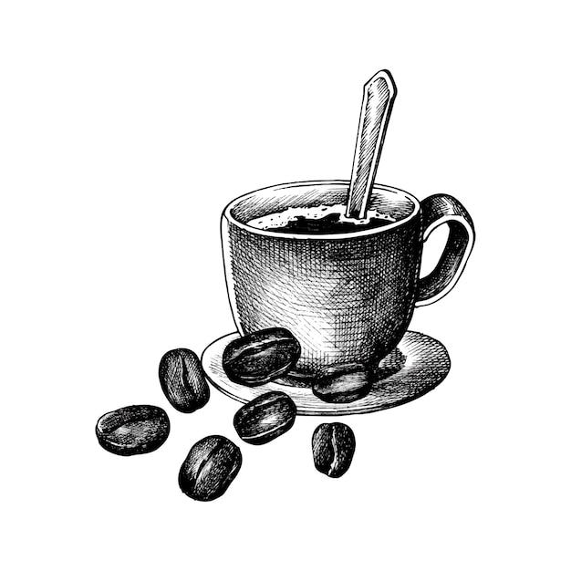 Café et café en grains Vecteur gratuit