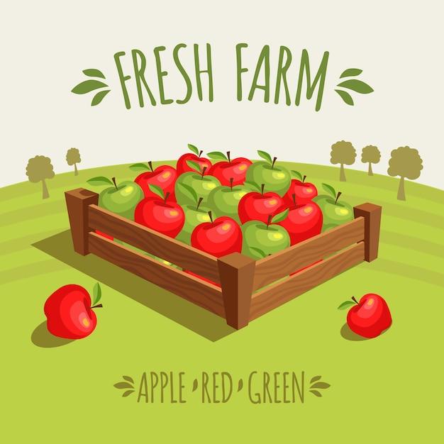 Caisse en bois pleine de pommes rouges et vertes. Vecteur Premium
