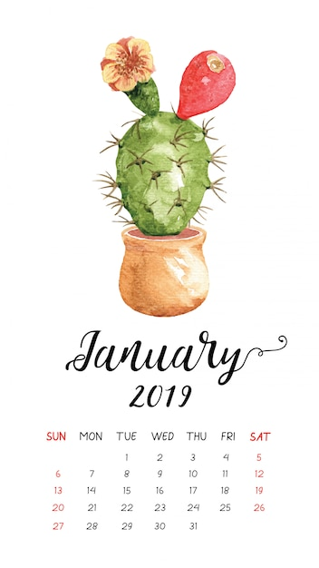 Calendrier Aquarelle De Cactus Pour Janvier 2019. Vecteur Premium