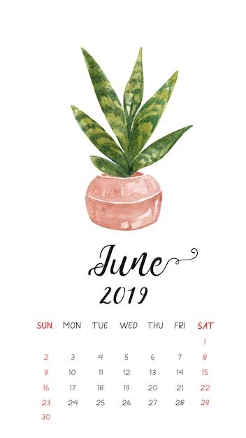 Calendrier Aquarelle De Cactus Pour Juin 2019. Vecteur Premium