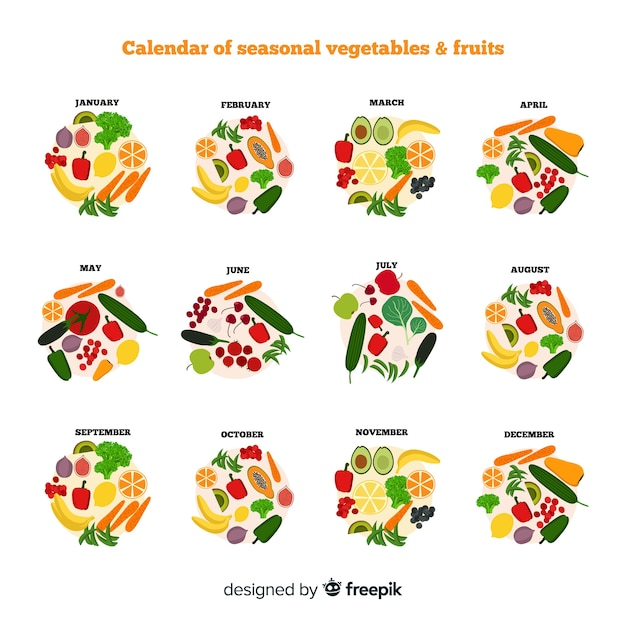 Calendrier de fruits et de fruits de saison de cercles dessinés à la main Vecteur gratuit