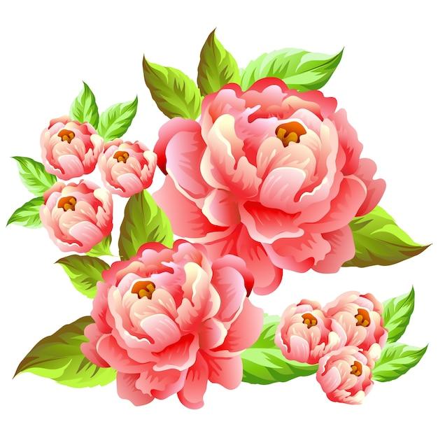 Camélia Fleur Illustration | Vecteur Premium