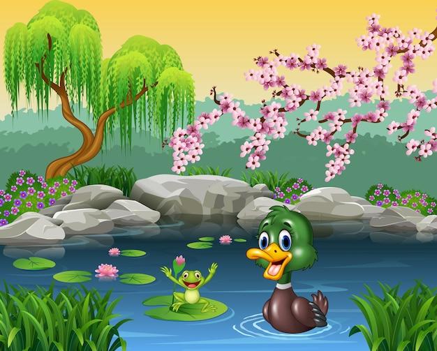Canard mignon nageant avec la grenouille Vecteur Premium