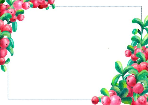 Canneberges mûres sur fond blanc isolé Vecteur Premium