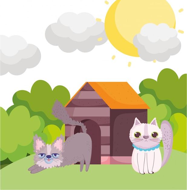 Caricature De Chats Dans L'herbe Avec Des Animaux Domestiques Vecteur Premium