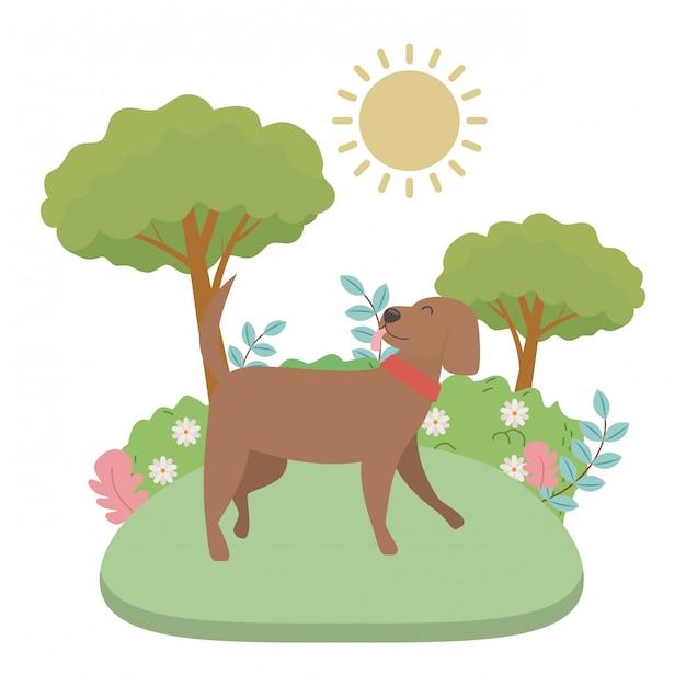 Caricature de chien Vecteur gratuit