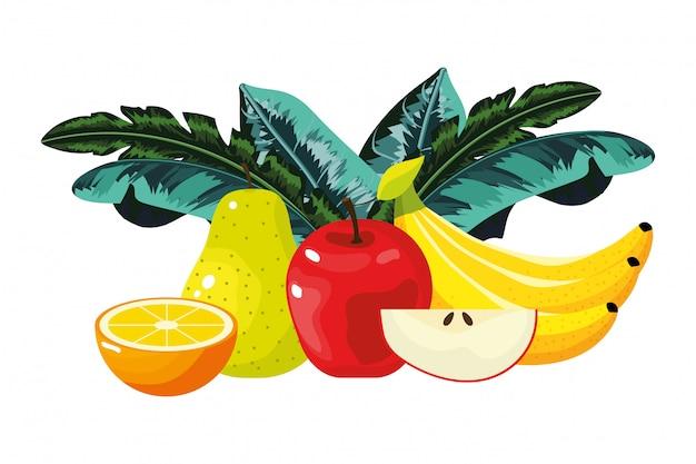 Caricature de fruits tropicaux Vecteur Premium