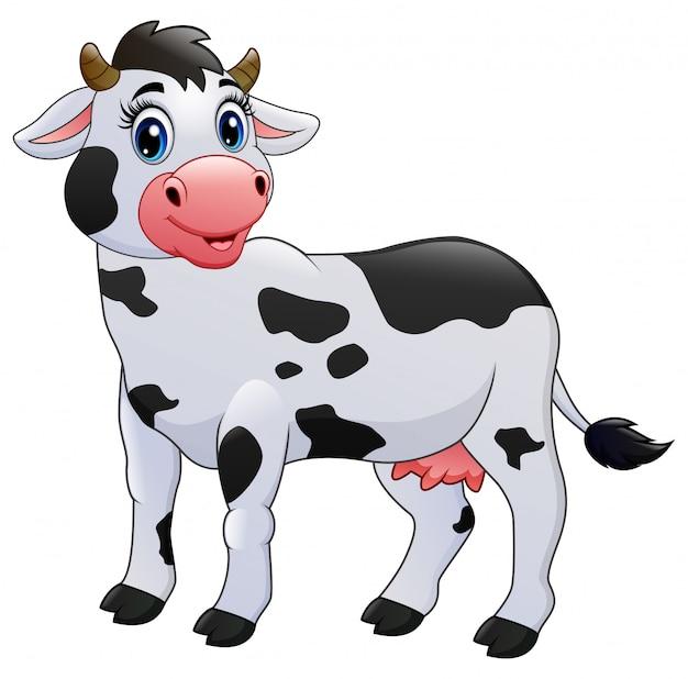 Caricature de vache isolée sur blanc Vecteur Premium