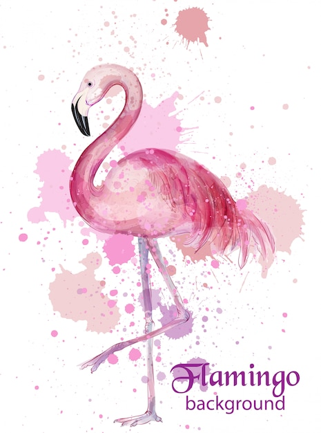 Carte aquarelle vintage flamant rose Vecteur Premium