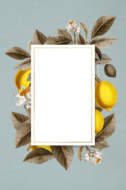 Carte encadrée au citron Vecteur gratuit