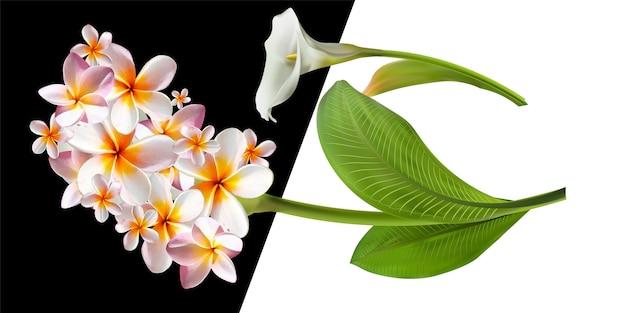 Carte avec illustration florale. bouquet de fleurs avec feuille exotique isolé sur fond blanc. Vecteur Premium
