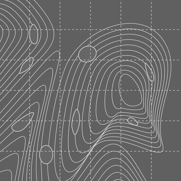 Carte de lignes de contour abstraites blanches et grises Vecteur gratuit