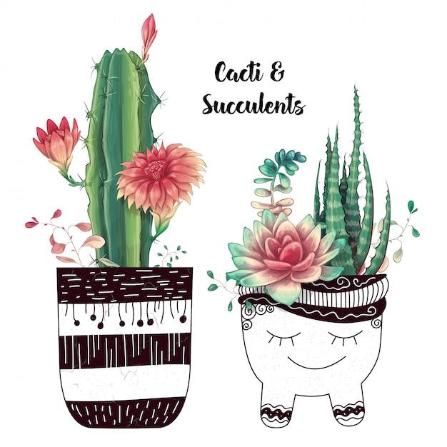 Carte avec set de cactus et plantes succulentes Vecteur Premium