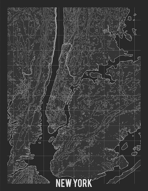 Carte Topographique De New York Vecteur gratuit