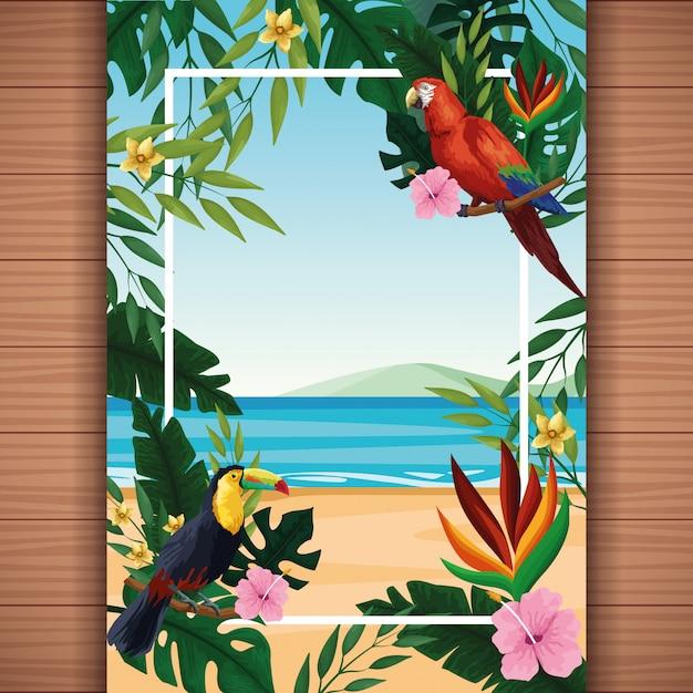 Carte vierge d'été avec cadre Vecteur gratuit
