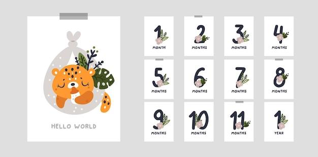 Cartes Jalons Pour La Première Année De La Vie Du Bébé. De 1 Mois à 12 Mois Vecteur Premium