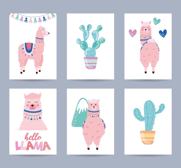 Cartes Avec Lama Et Cactus Vecteur Premium